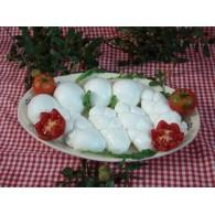 Vendita onlineTrecce fiordilatte (mozzarelle) artigianali pugliesi con latte fresco
