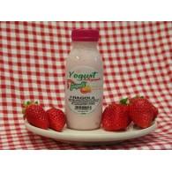 Vendita online Yogurt alla fragola artigianle pugliese con latte fresco