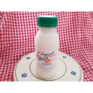 Vendita online Yogurt artigianale all'ananas con latte fresco pugliese