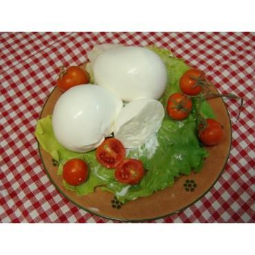 Vendita online fior di latte  (mozzarelle) artigianli pugliesi fatte con latte fresco