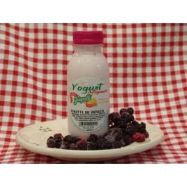 Yogurt artigianale ai frutti di bosco con latte fresco