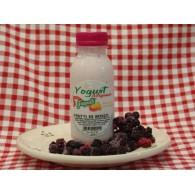 Vendita online Yogurt artigianale ai frutti di bosco con latte fresco