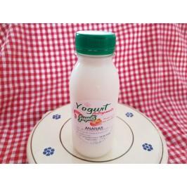 Yogurt artigianale all'ananas con latte fresco